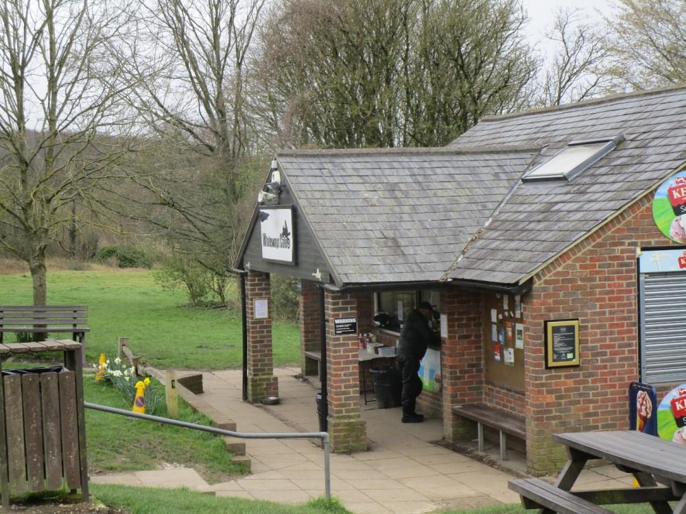A29 forest dog walk and cafe near Arundel, West Sussex - Sussex dog walks.JPG