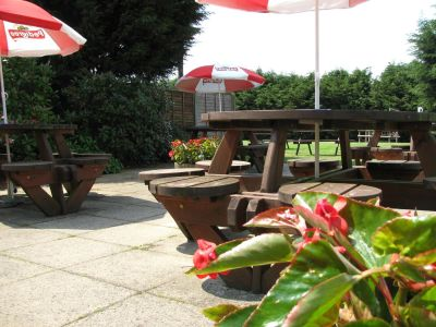 A137 Dog-friendly pub near Colchester, Essex - Driving with Dogs