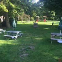 Dog-friendly pub with large family garden, Essex - Essex dog-friendly pub and dog walk