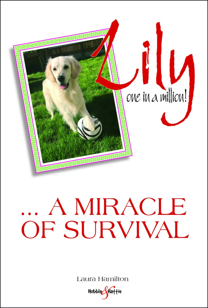 Lily - a miracle of survival - Driving with Dogs