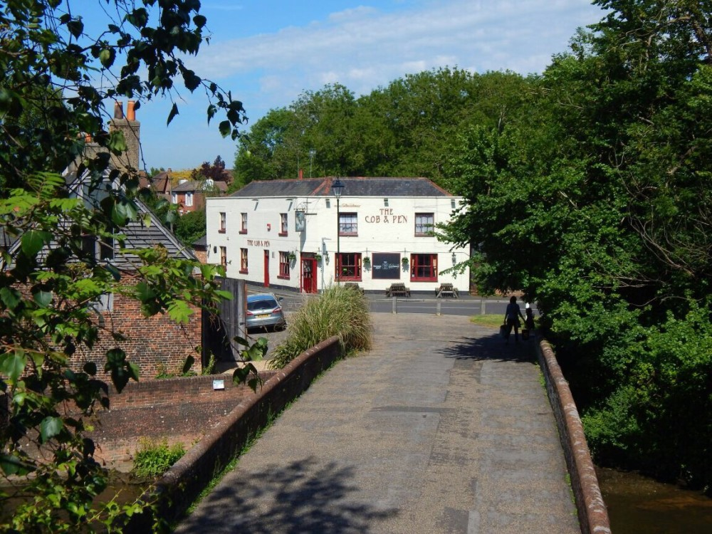 Fareham dog-friendly pub, Hampshire - Hampshire dog-friendly pub and dog walk