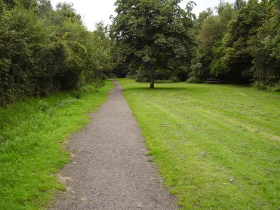 M6 Junction 22 Culcheth Linear Park, Cheshire - Driving with Dogs