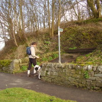 Moorland dog walk and dog-friendly pub near Bakewell, Derbyshire - Peak District dog-friendly pub and dog walk