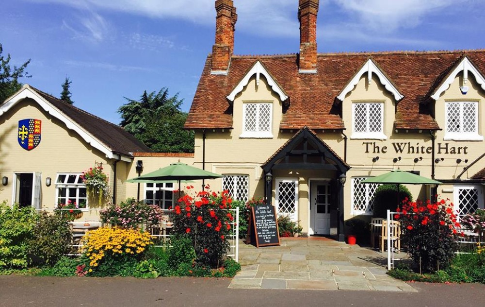 M27 Junction 1 dog-friendly pub, Hampshire - Hampshire dog-friendly pub and dog walk
