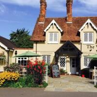 M27 Junction 1 dog-friendly pub, Hampshire - Hampshire dog-friendly pub and dog walk