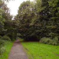 M6 Junction 22 Culcheth Linear Park, Cheshire - Dog walks in Cheshire