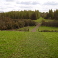 Dob Park, Hucknall, Nottinghamshire - Dog walks in Nottinghamshire