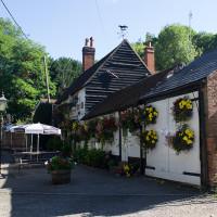 M40 Junction 2 dog walk and dog-friendly pub, Buckinghamshire - Buckinghamshire dog friendly pub and dog walk