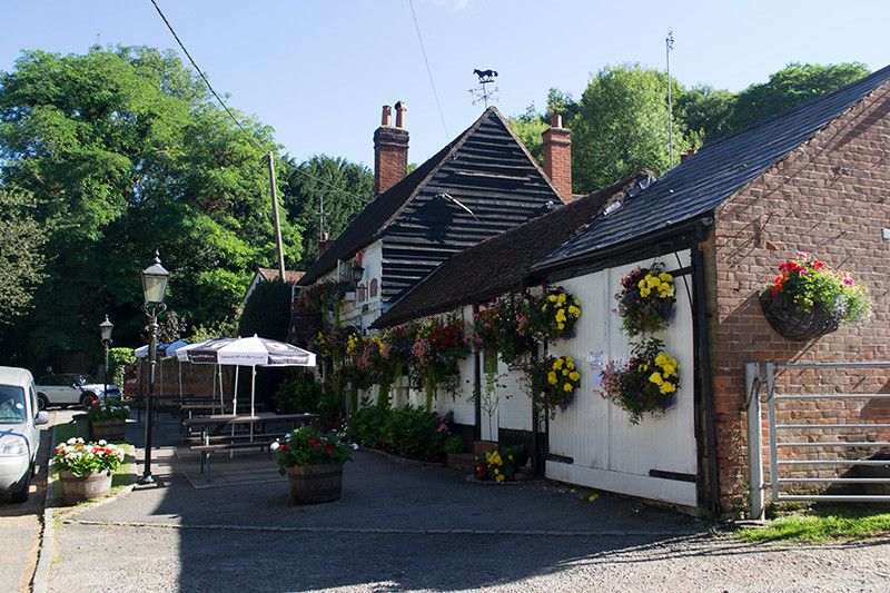 M40 Junction 2 dog walk and dog-friendly pub, Buckinghamshire - Buckinghamshire dog friendly pub and dog walk