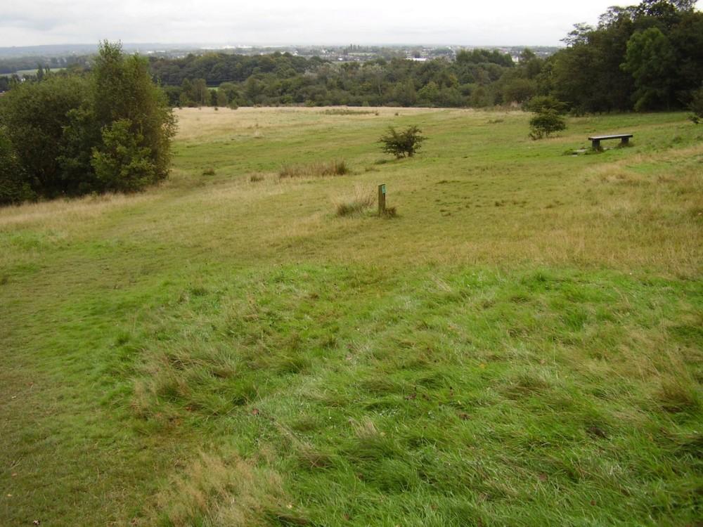 M6 Junction 25 dog walk near Ashton, Lancashire - Dog walks in Lancashire