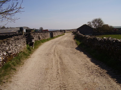 Dog walk and dog-friendly pub near Tideswell, Derbyshire - Driving with Dogs