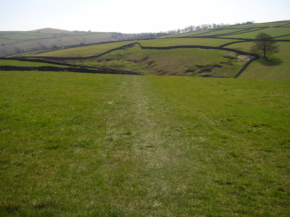 Dog walk and dog-friendly pub near Tideswell, Derbyshire - Peak District dog walk and dog-friendly pub