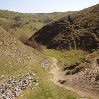 Dog walk and dog-friendly pub near Tideswell, Derbyshire - Peak District dog walk and dog-friendly pub