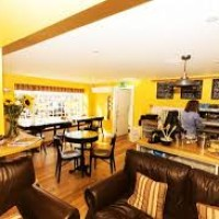 Mediterranean style cafe by the water and dogs are welcome, Cornwall - justbe cafe.jpg