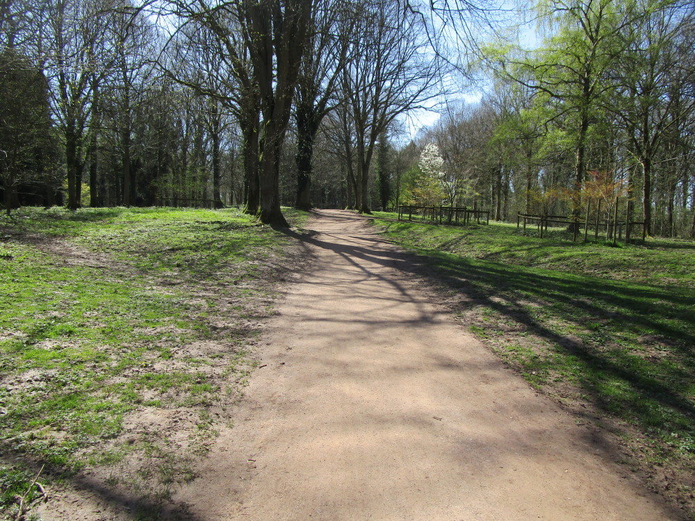 Queenswood Country Park dog walks, Herefordshire - Dog walks in Herefordshire