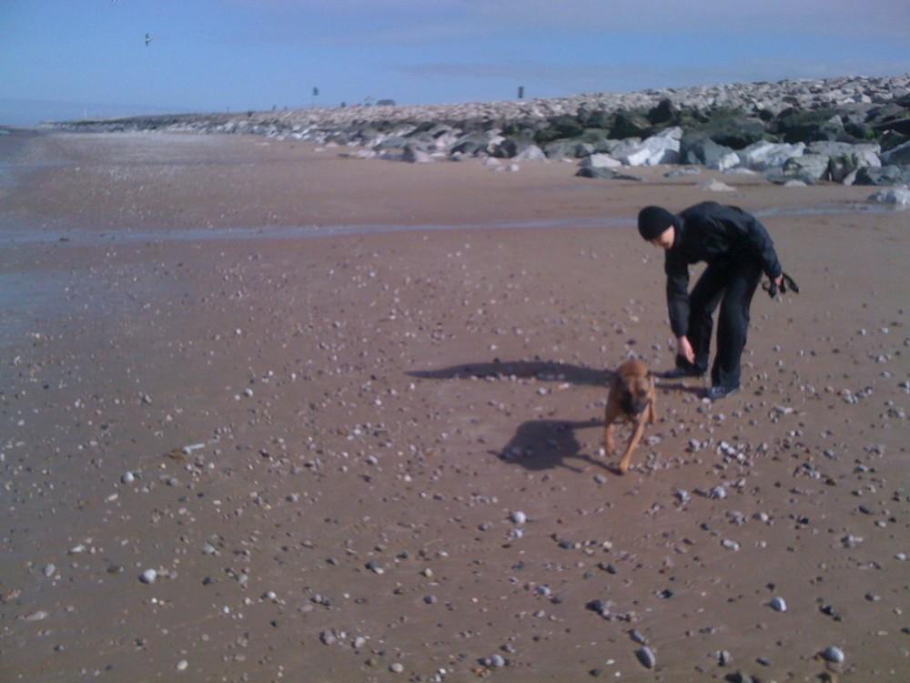 Towyn dog-friendly beach near Rhyl, Wales - Dog walks in Wales