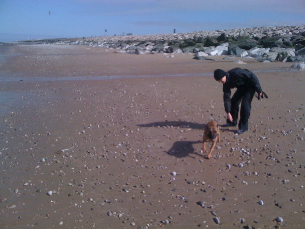 Towyn dog-friendly beach near Rhyl, Wales - Dog walks in Wales