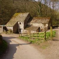 Lathkill Dale short dog walk, swimming and dog-friendly pub, Derbyshire - Image 1