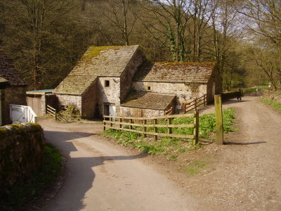 Lathkill Dale short dog walk, swimming and dog-friendly pub, Derbyshire - Driving with Dogs