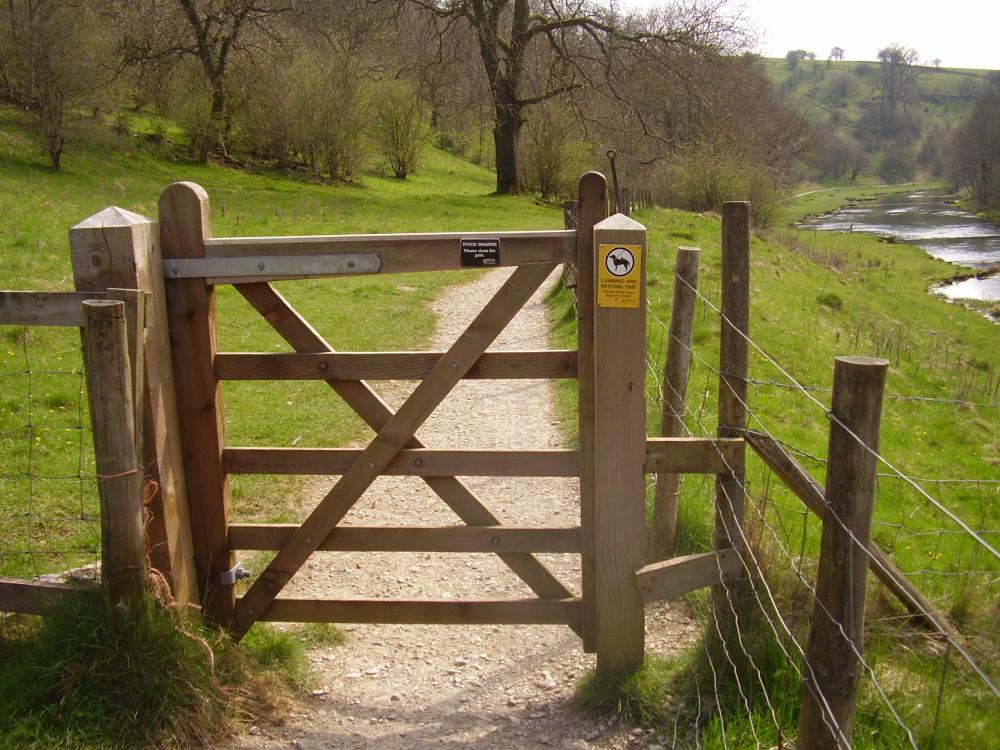 Lathkill Dale short dog walk, swimming and dog-friendly pub, Derbyshire - Dog walks in Derbyshire
