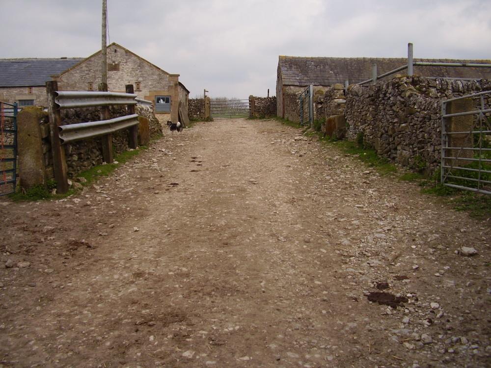 Riverside dog walk, swimming and dog-friendly pub, Derbyshire - Image 14