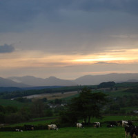 A5 Rhydlydan dog-friendly pub, Wales - Dog walks in Wales