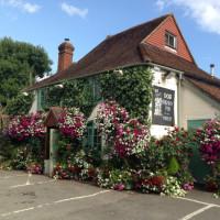M27 Junction 2 Copythorne dog-friendly pub, Hampshire - Hampshire dog-friendly pub and dog walk
