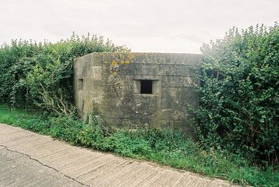 Historic village with riverside dog walk, Essex - pillbox.jpg