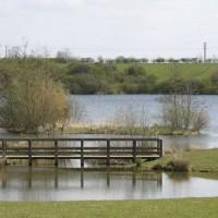 Crown Lakes Country Park dog walk, Cambridgeshire