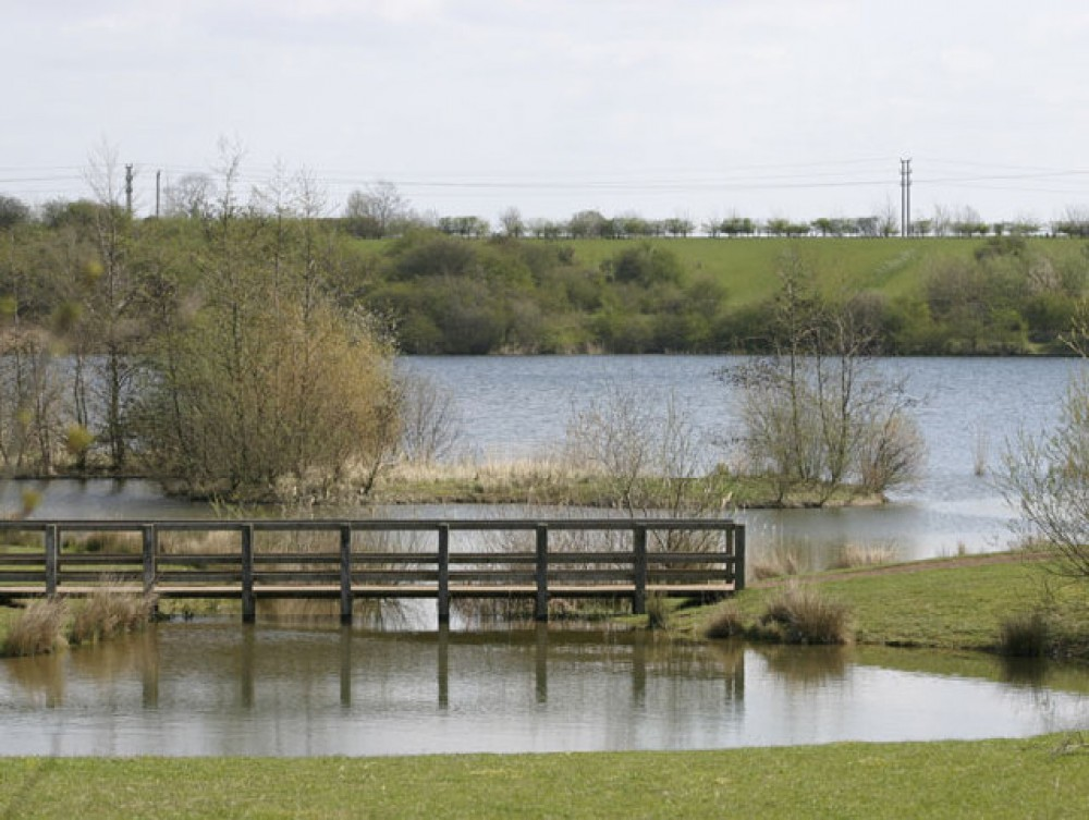 Crown Lakes Country Park dog walk, Cambridgeshire - Dog walks in Cambridgeshire