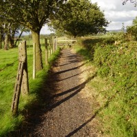 Grimsargh dog walk, Lancashire - Dog walks in Lancashire