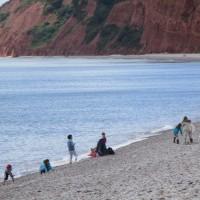 Heritage beach and dog walk, Devon - Devon dog walking places.JPG