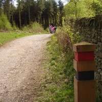 Macclesfield Forest dog walks, Cheshire - Dog walks in Cheshire
