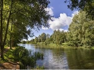 Country Park dog walk near Colchester, Essex - Essex dog walks near Colchester.jpg