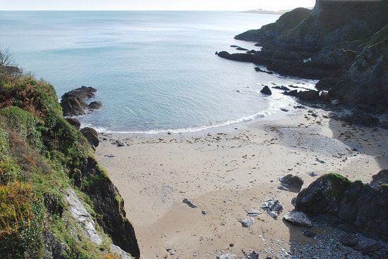 Coastal dog walk and all year dogs allowed beach, Cornwall - dog-friendly beach near Mevagissey.jpg