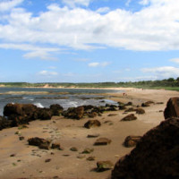 Gullane Bents dog-friendly beach, Scotland - Dog walks in Scotland