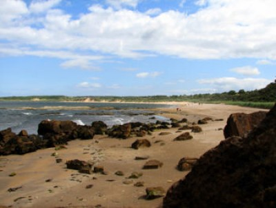 Gullane Bents dog-friendly beach, Scotland - Driving with Dogs