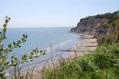 Appley dog-friendly beach, Isle of Wight - Driving with Dogs