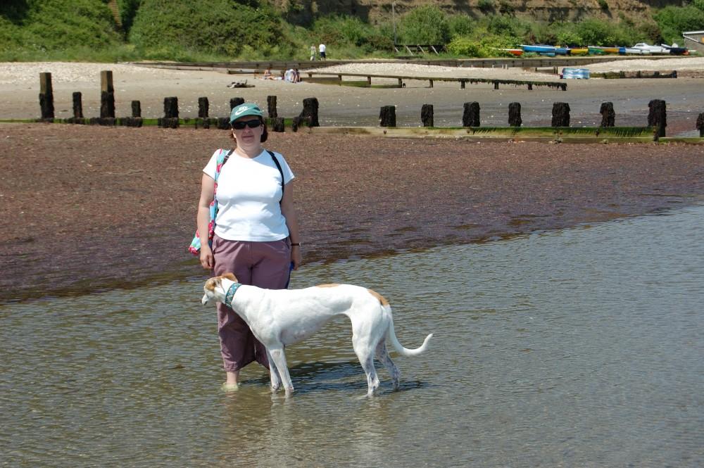 Appley dog-friendly beach, Isle of Wight - Dog walks on the Isle of Wight