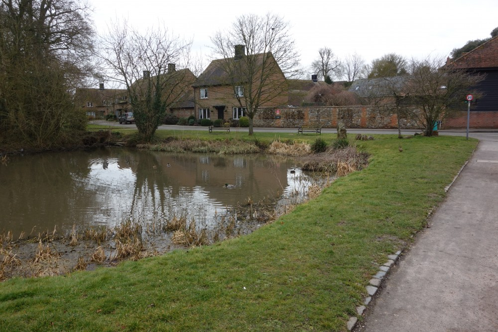 East Ilsley dog-friendly pub and dog walk, Berkshire - Berkshire dog-friendly pub and dog walk