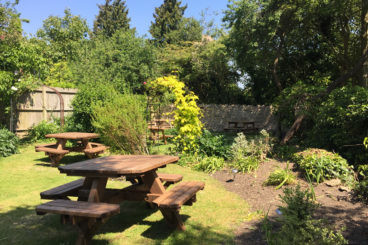 River walk and dog-friendly pub near Thame, Buckinghamshire - Driving with Dogs