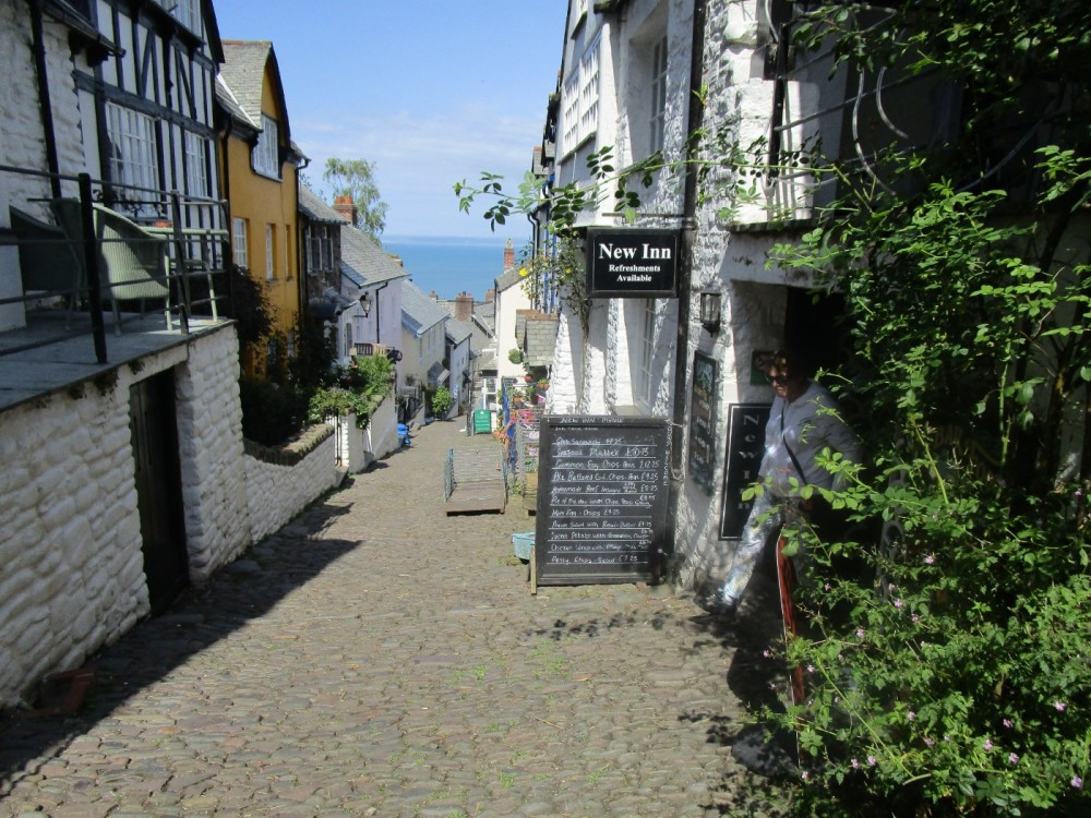 A39 Doggie day out and walkies, Devon - Devon dog walk and dog-friendly pub.JPG