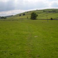 Hartington dog walk and dog-friendly pubs, Derbyshire - Image 8