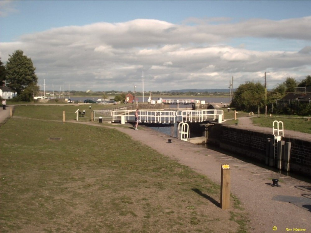 Lydney Canal dog walk, Gloucestershire - Dog walks in Gloucestershire