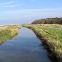 A55 dog-friendly beach and walk near Colwyn Bay, Clwyd, Wales - Dog walks in Wales