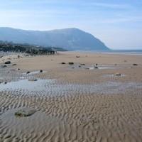 A55 dog-friendly beach near Conwy, Wales - Dog walks in Wales
