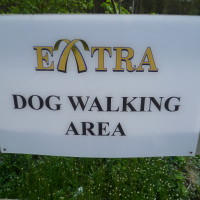 M40 Beaconsfield Services dog walk, Buckinghamshire - Dog walks in Buckinghamshire