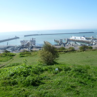 White Cliffs of Dover dog walk, Kent - Dog walks in Kent