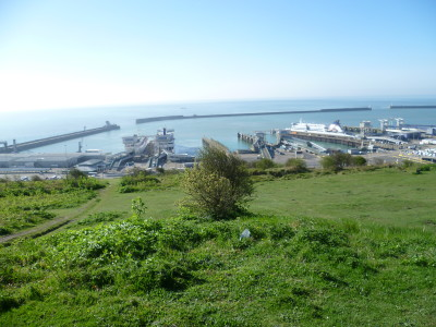 White Cliffs of Dover dog walk, Kent - Driving with Dogs