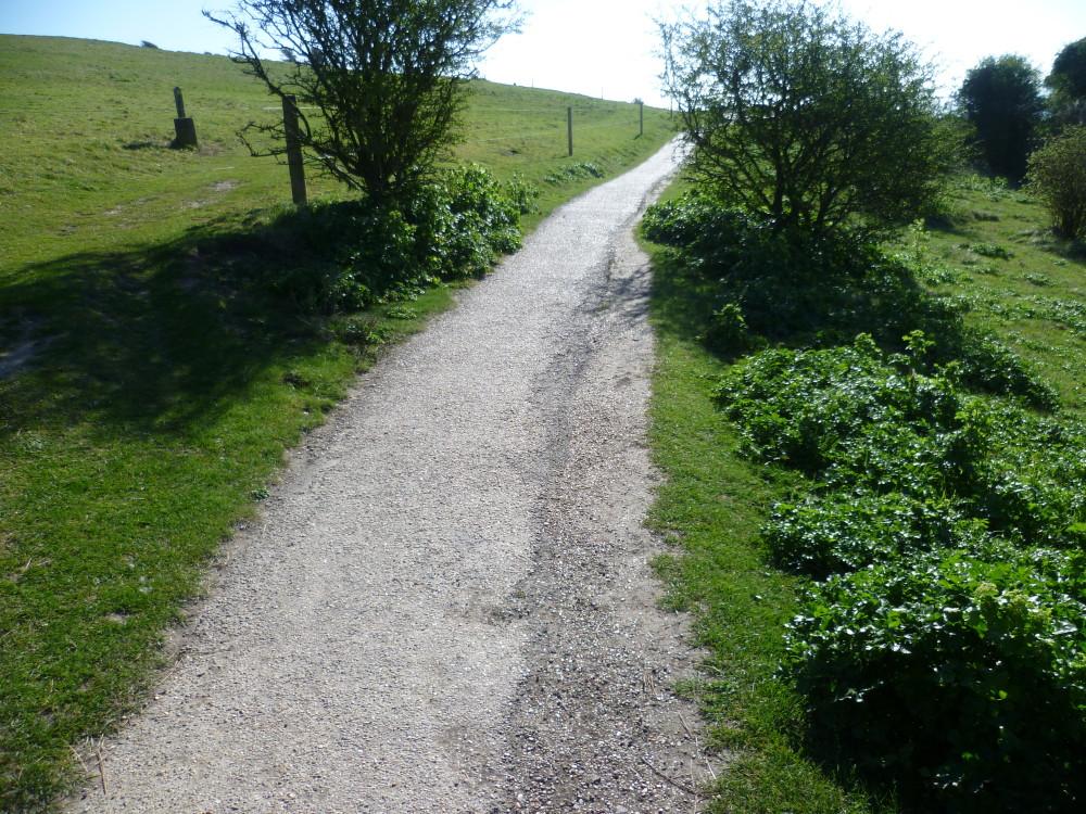 White Cliffs of Dover dog walk, Kent - Dog walks in Kent